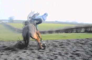 Pad sa konja